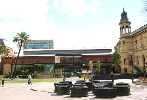 South Australian Museum in Adelaide