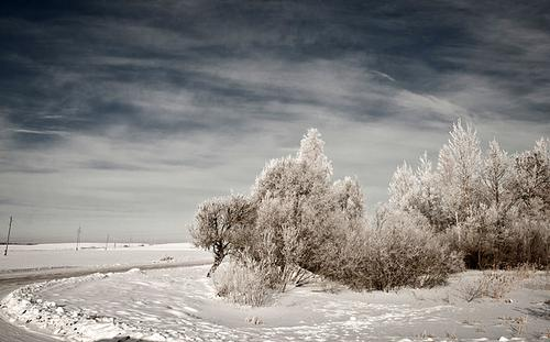 Winters landschap in Letland